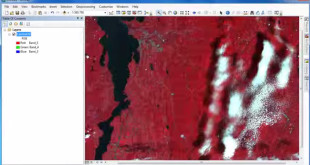 NDVI in ArcGIS