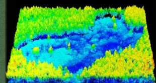 Modeling Biomass and Canopy Fuel Attributes Using LIDAR Technology