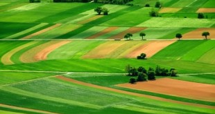 Smart Agriculture Trends, Innovation and the Changing Landscape