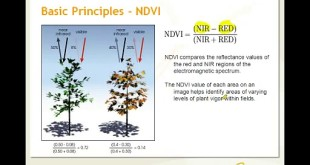 Applications of Remote Sensing for Crop Management – NDVI