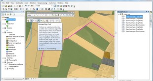 Reshaping Topology Edges in ArcGIS