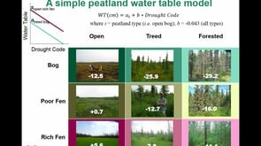 Hydrological and phenological monitoring of wildfire potential in boreal and taiga wetlands: remote sensing approaches