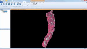 How to Create an NDVI Image with ERDAS IMAGINE