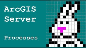 ArcGIS for Server – Touring the Manager – Processes