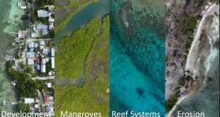 Drones and Open Data to Understand Development and Conservation Challenges