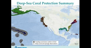 Deep-sea Corals of the USA: Surveys, Maps, Models, and Visualization