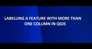 Labelling features in QGIS with more than one column